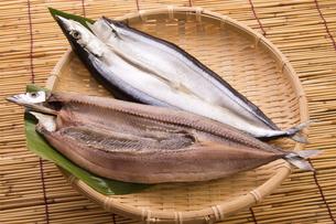 秋刀魚の開きの写真素材 [FYI04855984]