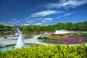 春の国営みちのく社の湖畔公園の写真素材 [FYI04856085]