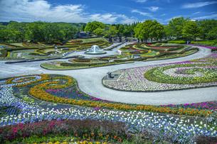 春の国営みちのく社の湖畔公園の写真素材 [FYI04856089]