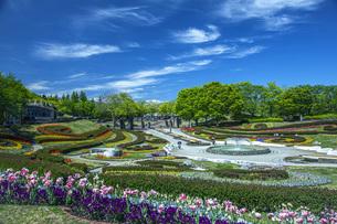 春の国営みちのく社の湖畔公園の写真素材 [FYI04856091]