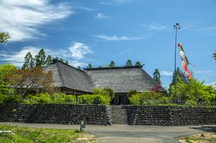 春の国営みちのく社の湖畔公園の写真素材 [FYI04856101]
