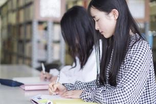 図書室で勉強する大学生の写真素材 [FYI04856291]