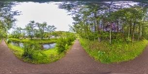 新緑の忍野八海・VR写真の写真素材 [FYI04856387]