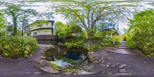 新緑の忍野八海・VR写真の写真素材 [FYI04856388]