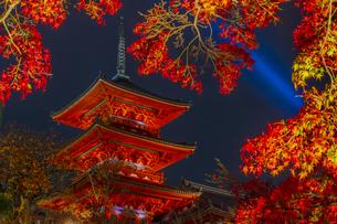 紅葉とライトアップされた清水寺の三重塔の写真素材 [FYI04856441]