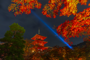 紅葉とライトアップされた清水寺の三重塔の写真素材 [FYI04856442]