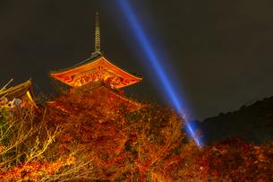紅葉とライトアップされた清水寺の三重塔の写真素材 [FYI04856444]