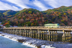 渡月橋と紅葉の嵐山の写真素材 [FYI04856476]