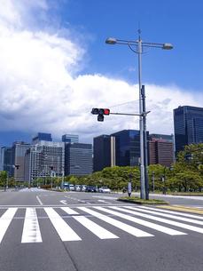 青空の広がる皇居前広場(内堀通り)から、東京駅方向となる丸の内ビル街を見渡すの写真素材 [FYI04856568]