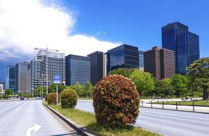 青空の広がる皇居前広場(内堀通り)から、東京駅方向となる丸の内ビル街を見渡すの写真素材 [FYI04856580]