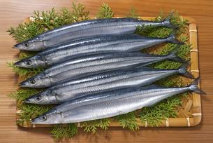 秋刀魚の写真素材 [FYI04856648]