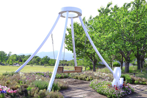 神奈川県立 花菜ガーデンの写真素材 [FYI04857255]