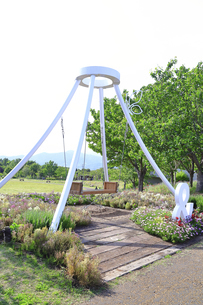 神奈川県立 花菜ガーデンの写真素材 [FYI04857256]