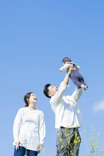 青空のもと、赤ちゃんを高く抱き上げる父母の写真素材 [FYI04857265]