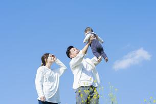 青空のもと、赤ちゃんを高く抱き上げる父母の写真素材 [FYI04857269]