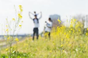 笑顔で野原を散歩する親子をアウトフォーカスで撮影の写真素材 [FYI04857286]