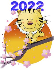 虎の年賀状イラストのイラスト素材 [FYI04857572]