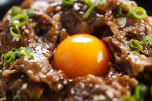 牛カルビ丼の写真素材 [FYI04857668]