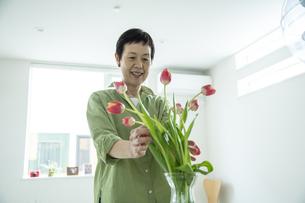 花を飾る女性の写真素材 [FYI04857927]
