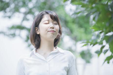 木々に癒される若い女性の写真素材 [FYI04858001]