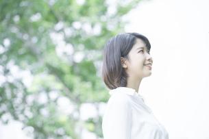 木々に癒される若い女性の写真素材 [FYI04858004]