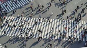 東京・渋谷・スクランブル交差点の写真素材 [FYI04858055]