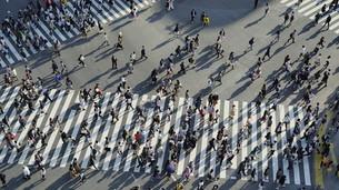 東京・渋谷・スクランブル交差点の写真素材 [FYI04858056]
