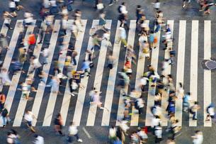 渋谷スクランブル交差点の写真素材 [FYI04858059]