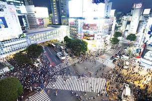渋谷スクランブル交差点の写真素材 [FYI04858061]