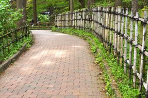あけぼの山農業公園の游歩道に作られた竹で作られた柵と園内の光景の写真素材 [FYI04858100]