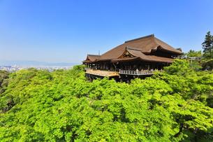 世界文化遺産 京都・清水寺の奥の院より本堂舞台の写真素材 [FYI04858224]