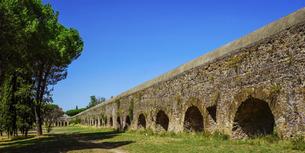 草原を彩るイタリアカサマツ(笠松)の林を縫って古代ローマ水道橋が通るローマ水道橋公園の写真素材 [FYI04858337]