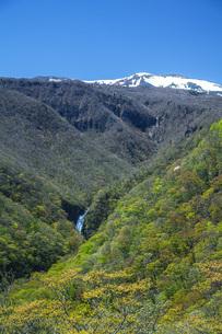 新緑の不動滝の写真素材 [FYI04858562]