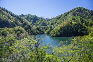 新緑のながい百秋湖の写真素材 [FYI04858570]