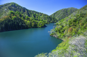 新緑のながい百秋湖の写真素材 [FYI04858572]