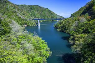 新緑のながい百秋湖の写真素材 [FYI04858576]