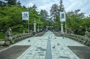 春の松が岬公園の写真素材 [FYI04858608]