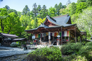 新緑の亀岡文殊堂の写真素材 [FYI04858613]