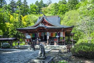 新緑の亀岡文殊堂の写真素材 [FYI04858614]