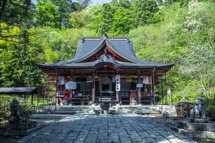 新緑の亀岡文殊堂の写真素材 [FYI04858615]
