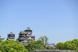 熊本城「復興再建完了の天守閣」二の丸広場より熊本城風景の写真素材 [FYI04858693]