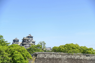 熊本城「復興再建完了の天守閣」二の丸広場より熊本城風景の写真素材 [FYI04858694]