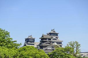 熊本城「復興再建完了の天守閣」二の丸広場より熊本城風景の写真素材 [FYI04858695]