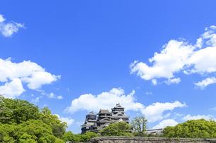 熊本城「復興再建完了の天守閣」二の丸広場より熊本城風景の写真素材 [FYI04858699]