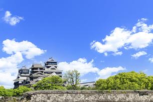 熊本城「復興再建完了の天守閣」二の丸広場より熊本城風景の写真素材 [FYI04858700]