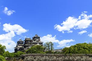 熊本城「復興再建完了の天守閣」二の丸広場より熊本城風景の写真素材 [FYI04858701]