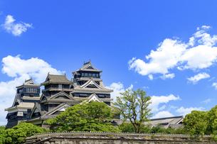 熊本城「復興再建完了の天守閣」二の丸広場より熊本城風景の写真素材 [FYI04858702]