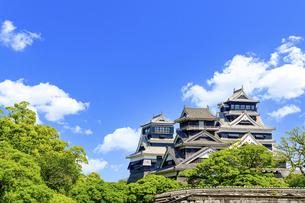 熊本城「復興再建完了の天守閣」二の丸広場より熊本城風景の写真素材 [FYI04858703]
