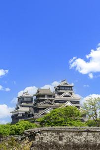 熊本城「復興再建完了の天守閣」二の丸広場より熊本城風景の写真素材 [FYI04858704]
