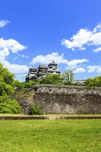 熊本城「復興再建完了の天守閣」二の丸広場より熊本城風景の写真素材 [FYI04858706]